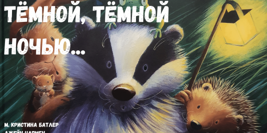 Детские Аудиосказки - Аудиосказка ТЕМНОЙ, ТЕМНОЙ НОЧЬЮ